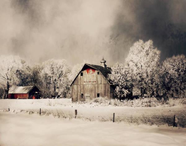 Photograph - Christmas Spirit by Julie Hamilton