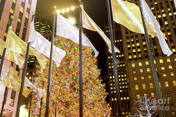 Wall Art - Photograph - Christmas Tree At Rockefeller Center In New York City by John Rizzuto