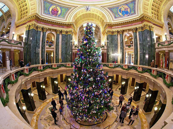 Photograph - Christmas Tree -capitol - Madison - Wisconsin 1 by Steven Ralser