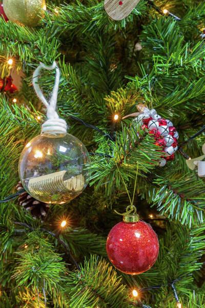 Nature Wall Art - Photograph - Christmas Tree Close-up by Iordanis Pallikaras