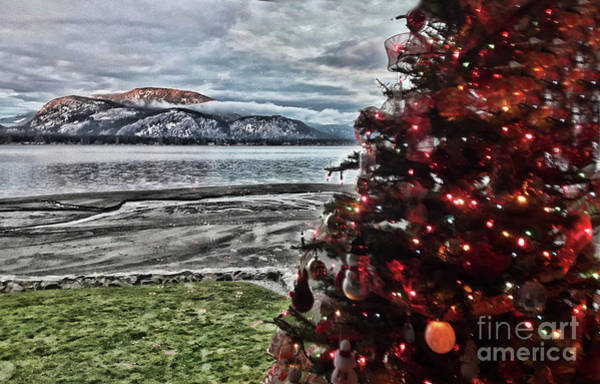 Photograph - Christmas View by Vivian Martin