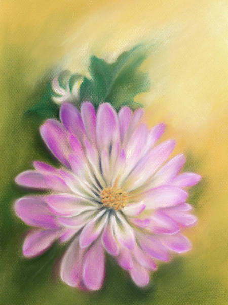 Pastel - Chrysanthemum Blossom With Bud And Leaf by MM Anderson