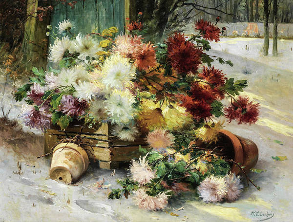 Painting - Chrysanthemums by Eugene Henri Cauchois