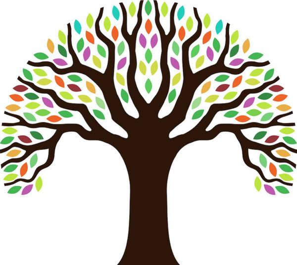 Oak Digital Art - Chunky Little Tree Illustration by Johnwoodcock