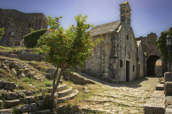 Wall Art - Photograph - Church And Pomegranate Tree by Mitch Shindelbower
