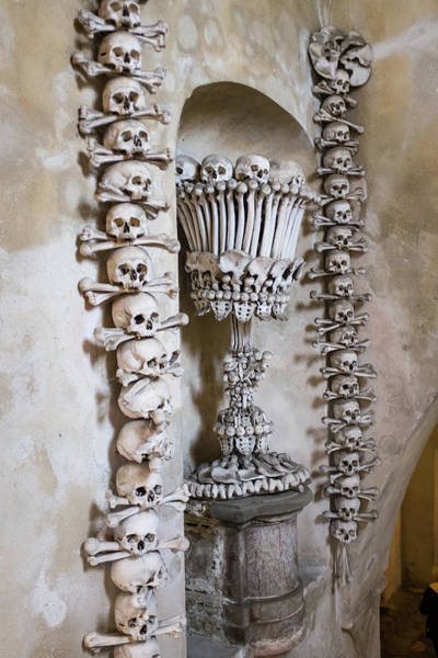 Photograph - Church Of Bones by Mark Duehmig