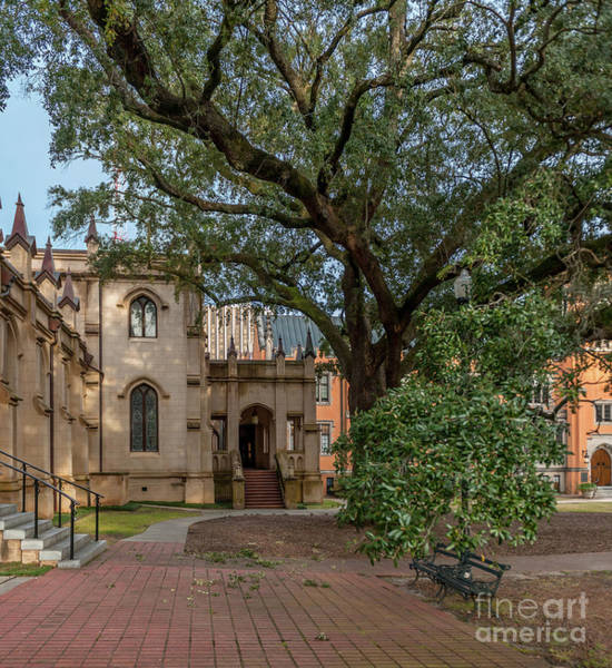 Photograph - Church Stoll - Trinity Episcopal Cathedral by Dale Powell