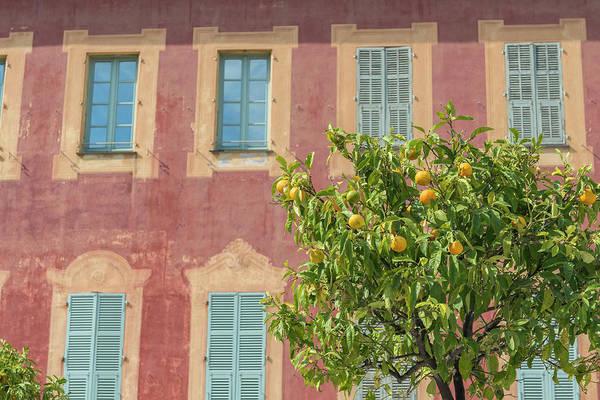 Wall Art - Photograph - Cimiez, Nice, France by Jim Engelbrecht