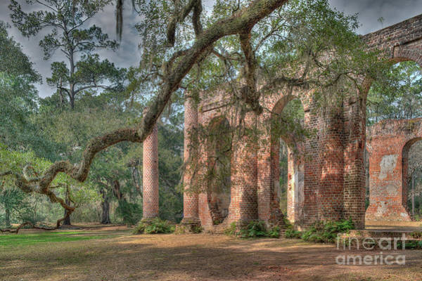 Photograph - Circa 1753 - Old Sheldon Church Ruins  by Dale Powell