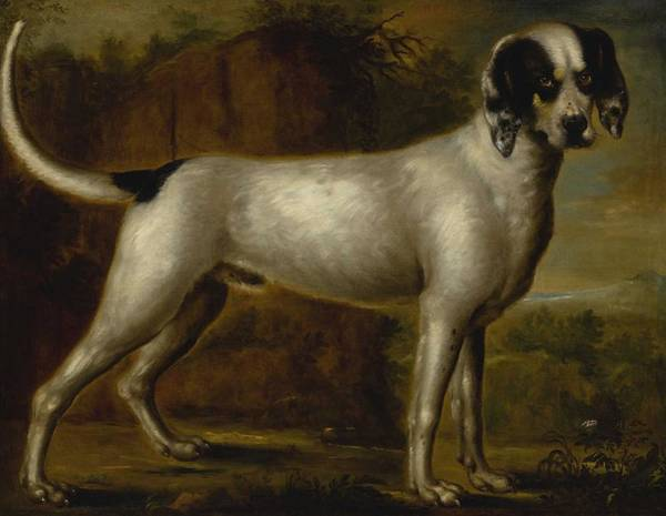 Wall Art - Painting - Circle Of John Wootton Portrait Of A Hound, Possibly A Talbot, Standing In A Landscape by Celestial Images
