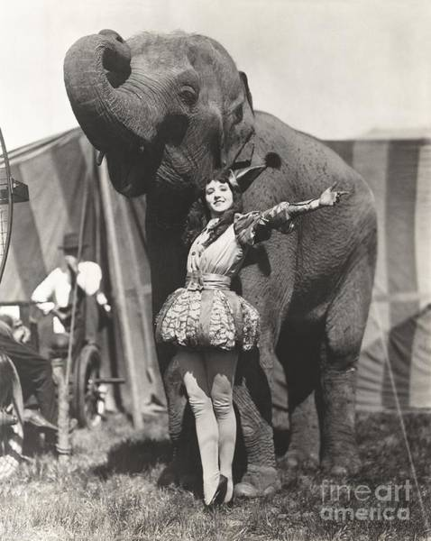 Wall Art - Photograph - Circus Performer Posing With Elephant by Everett Collection