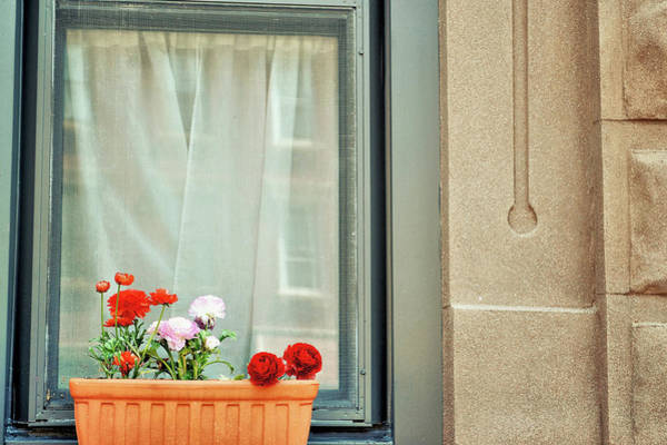 Photograph - City Blooms by JAMART Photography