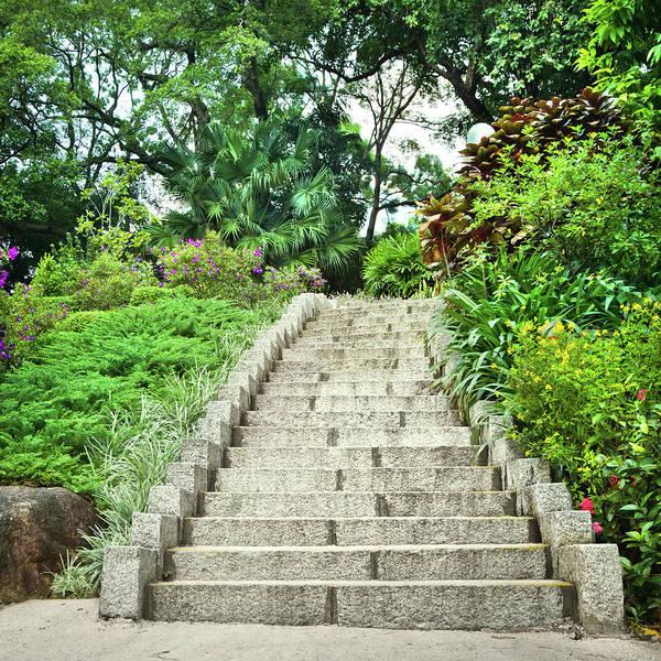 Residential Area Photograph - City Park by Nikada