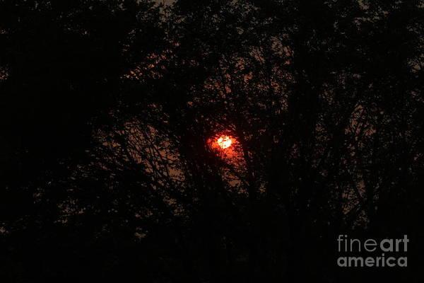 Photograph - City Sunrise by Ann E Robson