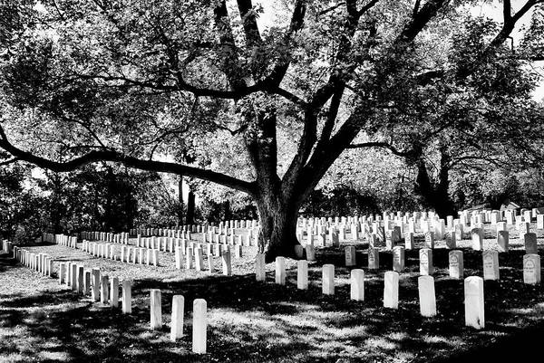 Photograph - Arlington Civil War Honored Dead by Paul W Faust - Impressions of Light