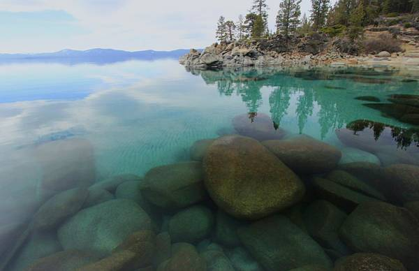 Photograph - Clarity Of Dreams Laketahoe by Sean Sarsfield