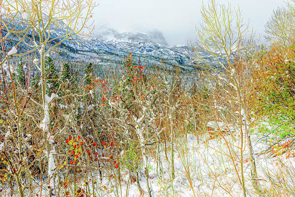 Wall Art - Photograph - Clash Of Seasons by Eric Glaser