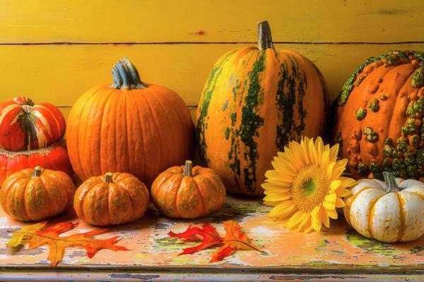 Wall Art - Photograph - Classic Autumn Still Life by Garry Gay