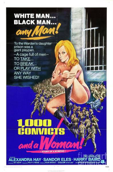 Wall Art - Painting - Classic Movie Poster - 1000 Convicts And A Woman by Esoterica Art Agency
