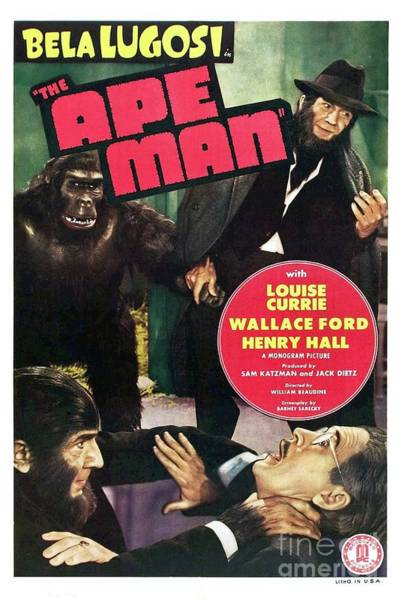 Wall Art - Painting - Classic Movie Poster - The Ape Man by Esoterica Art Agency