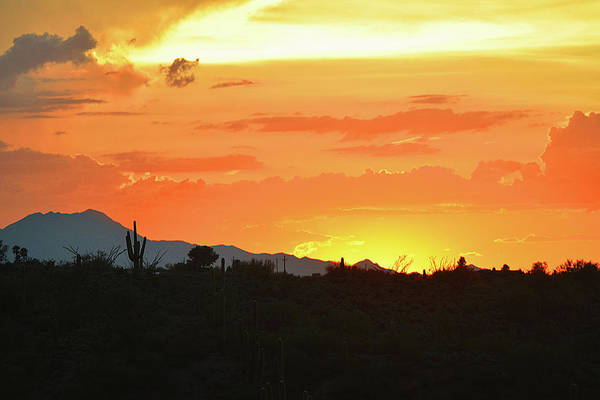 Photograph - Classic Sonoran Sunset  by Chance Kafka