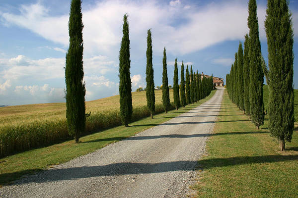 June Photograph - Classic Tuscan Farmhouse by Timothyball