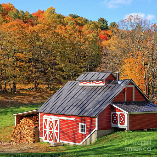 Wall Art - Photograph - Classic Vermont Maple Sugar Shack Square by Edward Fielding