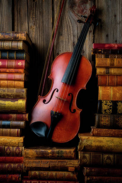 Wall Art - Photograph - Classic Violin And Old Books by Garry Gay