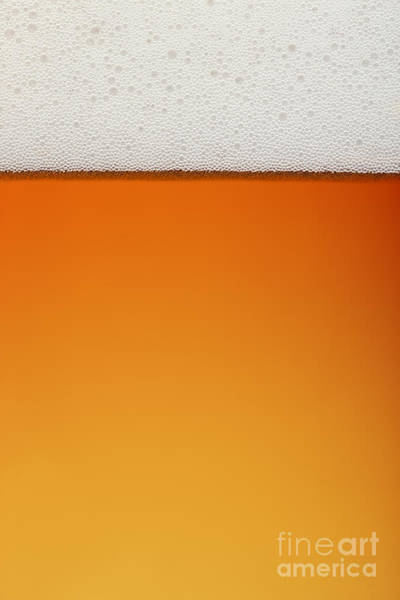 Wall Art - Photograph - Clean Beer And Froth Background All In by Johan Swanepoel