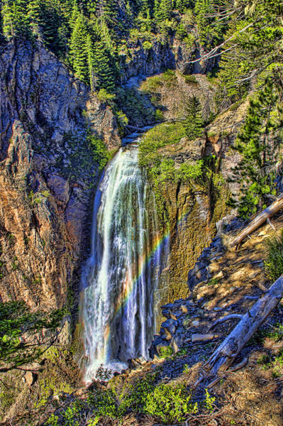 Camera Raw Photograph - Clear Creek Falls Washington by Brenton Cooper