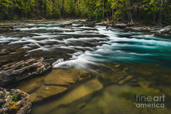 Wall Art - Photograph - Clear Flowing River. Glacier National by Ryantangphoto