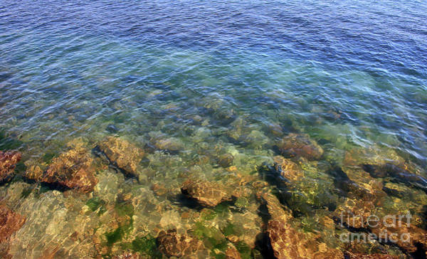 Photograph - Clear Water At Morro Bay by Michael Rock