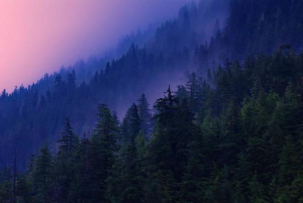 Ketchikan Photograph - Clearing Storm At Dawn by Carlos Rojas