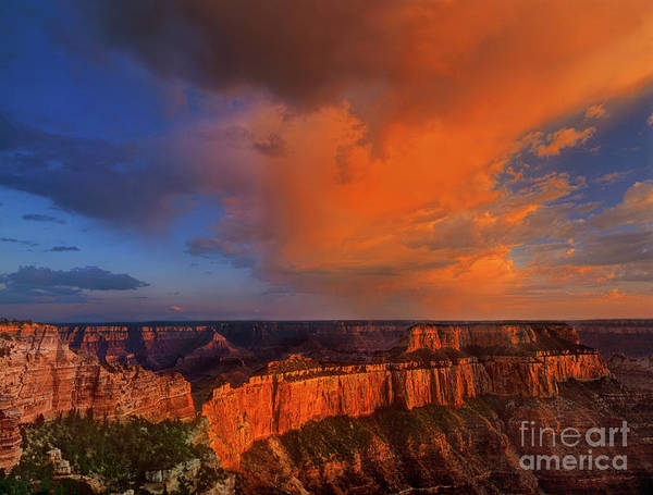 Photograph - Clearing Storm Cape Royal North Rim Grand Canyon Np Arizona by Dave Welling