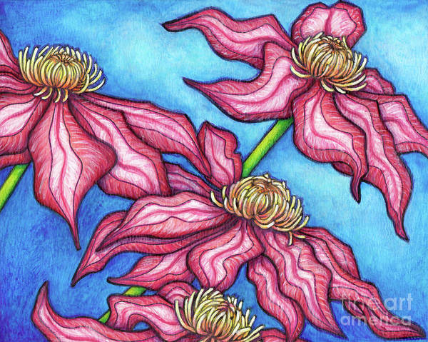 Painting - Clematis Asao by Amy E Fraser