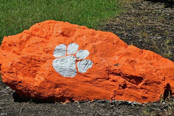 Photograph - Clemson Tigers by Lisa Wooten
