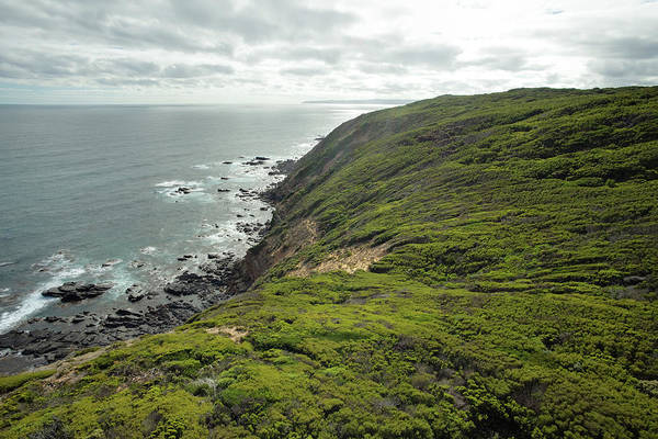 Covering Photograph - Cliff Edge, Great Ocean Road, Cape Otway by Tororo