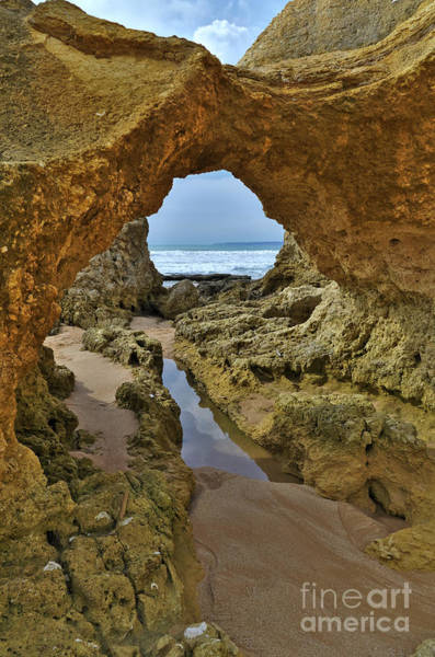 Photograph - Cliff Formations In Sao Lourenco Beach 2 by Angelo DeVal