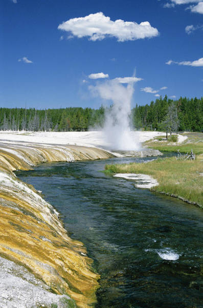 Firehole River Wall Art - Photograph - Cliff Geyser Erupts From Geyserite Bank by Tony Waltham / Robertharding