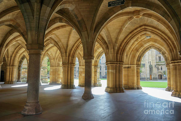 Photograph - Cloister Around by Amy Lyon Smith