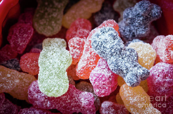 Wall Art - Photograph - Close-up Of Colorful Gummy Bears by Adam Lay