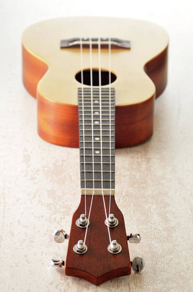 Acoustic Guitar Photograph - Close-up Of Guitar by Jean-christophe Riou