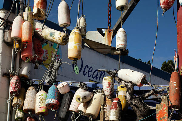 Wall Art - Photograph - Close Up Of Hanging Buoys , Astoria by Panoramic Images