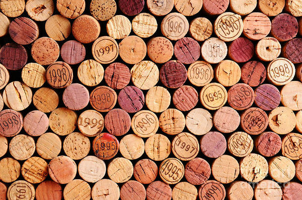 Vines Wall Art - Photograph - Closeup Of A Wall Of Used Wine Corks. A by Steve Cukrov