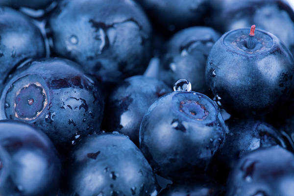 Wall Art - Photograph - Closeup Of Blueberries Piled Together by Eli asenova