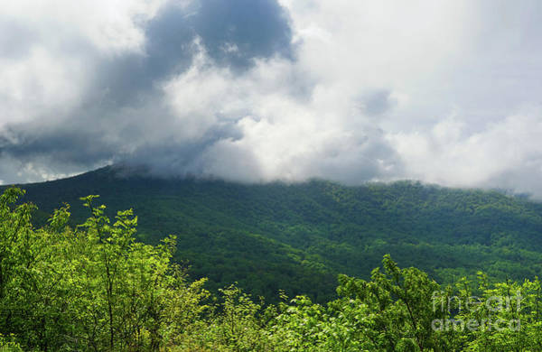 Photograph - Cloud Covered Mountain Top by Rachel Cohen