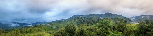 Wall Art - Photograph - Cloud Forest In Costa Rica by Alexey Stiop