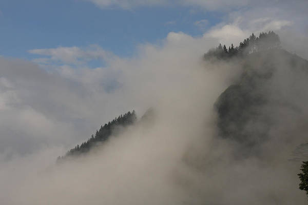 Wall Art - Photograph - Cloud Forest, Sri Lanka by David Hosking