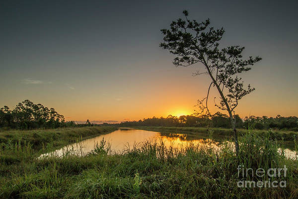 Art Print featuring the photograph Cloudless Hungryland Sunrise by Tom Claud