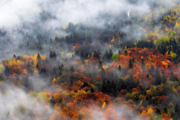 Photograph - Clouds And Fall Colors by Roberto Pagani
